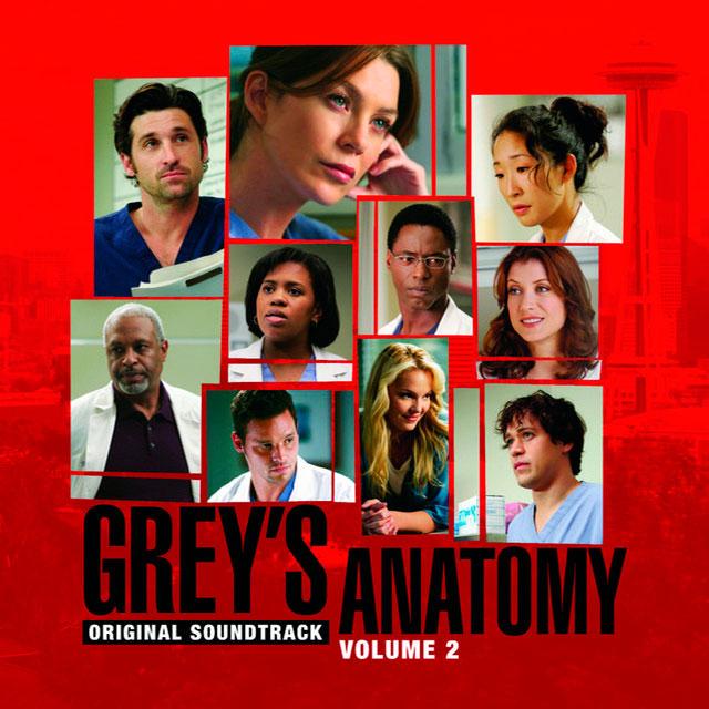 Grey's Anatomy, Vol. 2